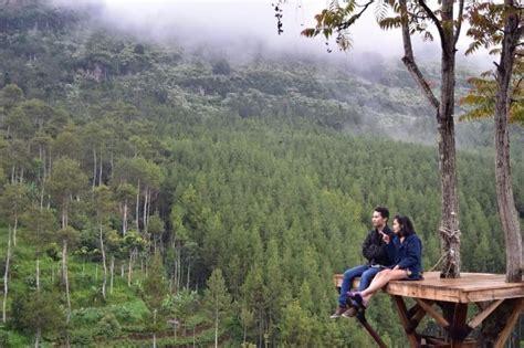 hutan pinus  lodge maribaya saingi popularitas tebing
