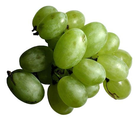 Free picture: green, grape, fruit