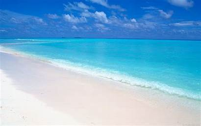 Beach Maldives Sand Ocean Background Desktop