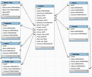 Er Diagram  U2013 Data Modelling By Mysql Workbench