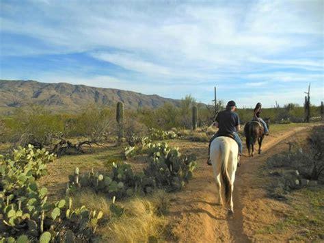 riding tucson horseback arizona park saguaro national houston horse trail bobbie experience tripadvisor