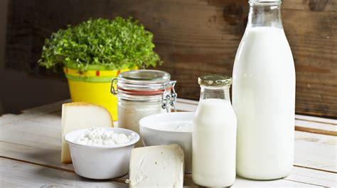 alimenti lattosio lista degli alimenti senza lattosio