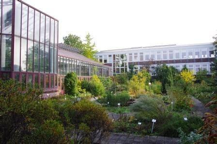 Botanischer Garten Kiel Stellenangebote by Arzneipflanzengarten Pharmazeutische Biologie