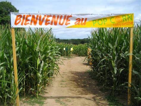 chambres d hotes sarzeau pop corn labyrinthe de maïs à ploemel dans le morbihan