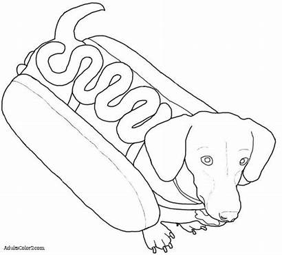 Dog Dogs Costumes Dachshund Drawing Line Costume