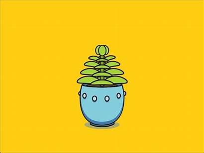 Growing Dribbble Plant Nye Illustration