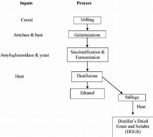 Flow Chart Of Ethanol Production From Cereal Grains