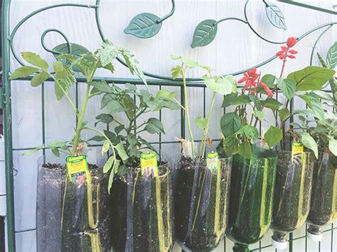 Diy Vertical Garden Cheap by How To Build A Diy Vertical Garden