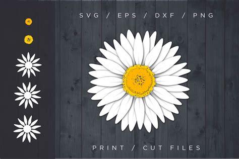 daisy svg cut file flower svg layered svg  cut files design bundles