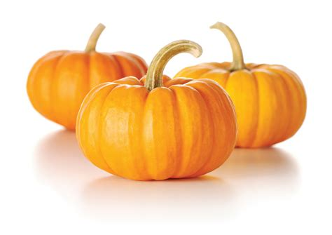 pumpkin the pumpkin power the health benefits of pumpkins massage 1