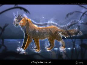 warriors cats warrior cats by erin by mizu no