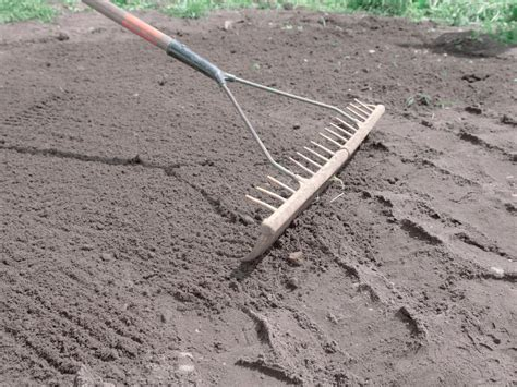 How To Prepare Soil For Planting A Lawn  Howtos Diy