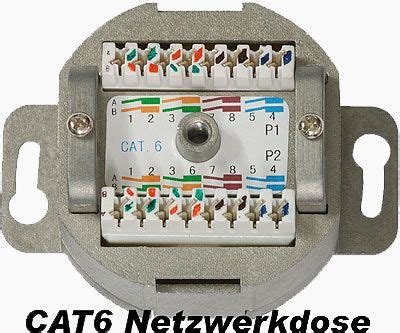 cat 6 dose x mediasat shop