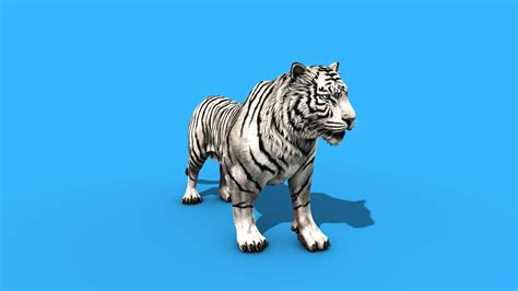 white tiger roar  model animated pixelboom