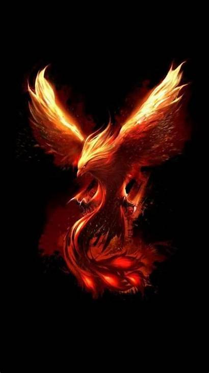 Phoenix Fenix Wallpapers Ave Bird Fire Mythical