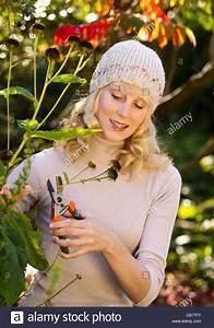 Bäume Beschneiden Jahreszeit : garden in autumn stockfotos garden in autumn bilder alamy ~ Yasmunasinghe.com Haus und Dekorationen