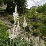 Botanischer Garten Bern Preise by Botanischer Garten Die Sch 246 Nsten Gr 252 Nanlagen Der Schweiz