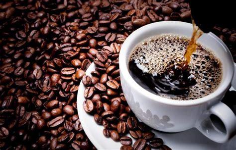 intl coffee conference  spotlight ethiopian