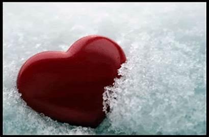 Heart Hearts Broken Animated Angry Cat Snow