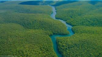 Amazon Rainforest Traveling Facts | Travel Innate
