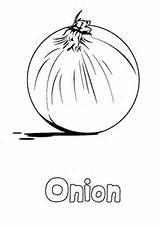 Coloring Vegetable Onion Printable Vegetables Kohlrabi Adult Colouring Carrots sketch template