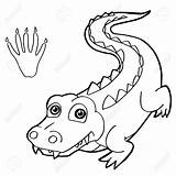 Crocodile Coloring Pages Nile Paw Baby Vector Drawing Gator Animal Wild Alligator Cool Clip Getdrawings Sheet Vignette Contemporary Animals sketch template