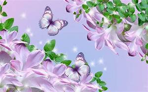 Purple, Butterfly, Wallpapers, 63, Images