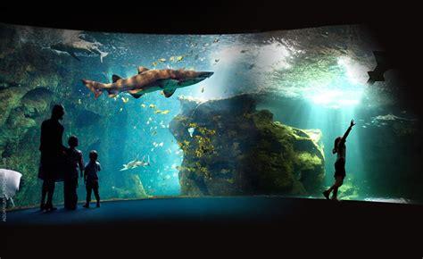 aquarium valence site officiel la rochelle ville en bord de mer gite vend 233 e mer gites la roussi 232 re