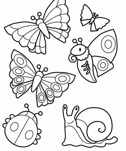 Coloring Butterfly Pages Template Templates Bug Colouring