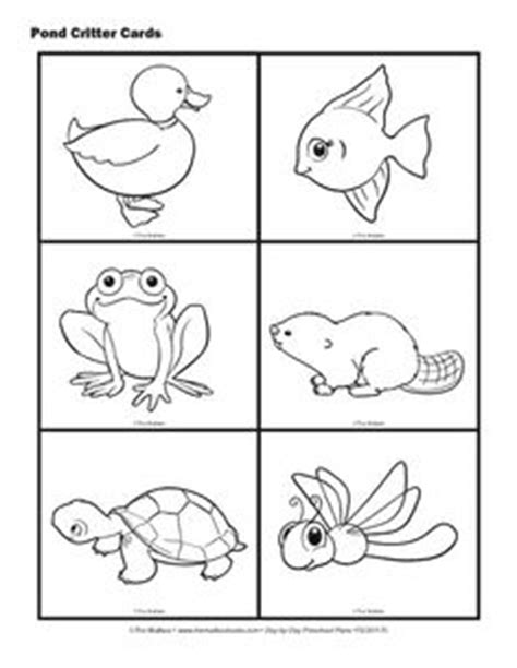 pond life coloring page pond life  worksheets