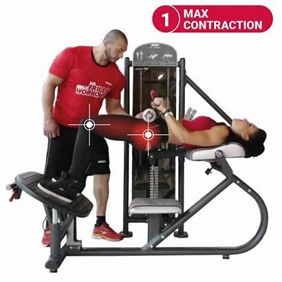 Panatta Glutes Circuit Special Gym Gluteus Hip