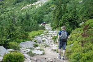 free, images, , , landscape, , wilderness, , adventure, , valley, , summer, , travel, , stream, , green, , holiday