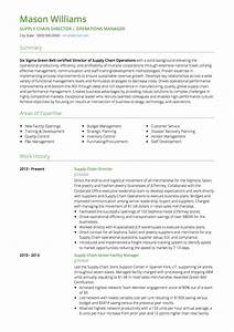 Logistics Cv Examples And Template