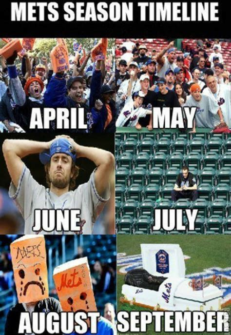 Mets Memes - major league baseball s pup friendly events let you take your dog out to the ballgame too