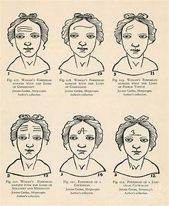 Physiognomy Photograph by Science Source