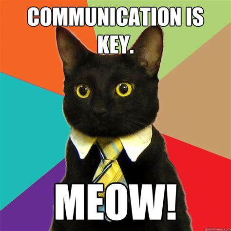 Business Cat Meme - communication is key meow business cat