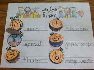Life Cycle Of A Pumpkin Sequencing Worksheet by Fall Into First Pumpkin Life Cycle
