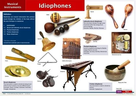 idiophones in the hornbostel sachs classification system idiophones are instruments which