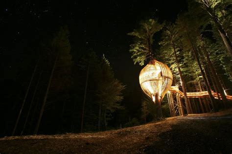 Redwoods Treehouse Restaurant In Auckland, New Zealand