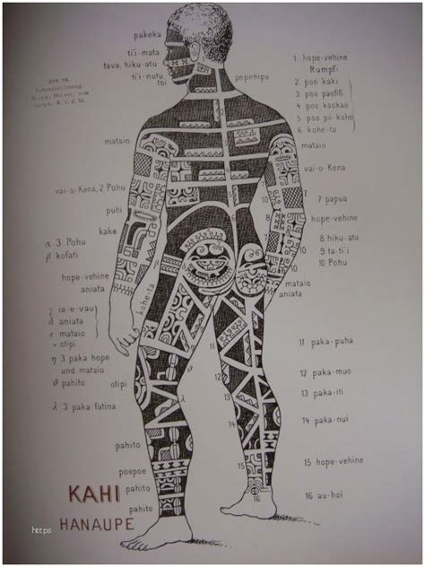 Signification Tatouage Maori Tatouage Maori Signification Ecurie Ole