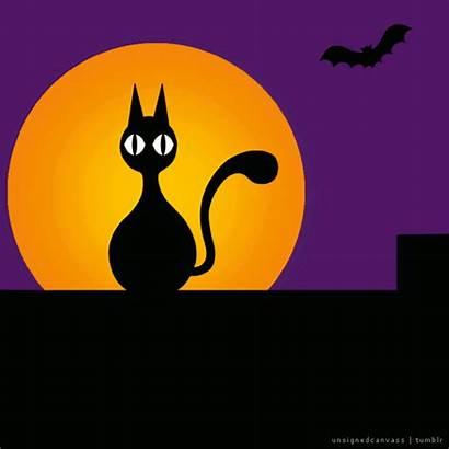 Spoopy Halloween Cat Ween Gifs Doctor Creepy