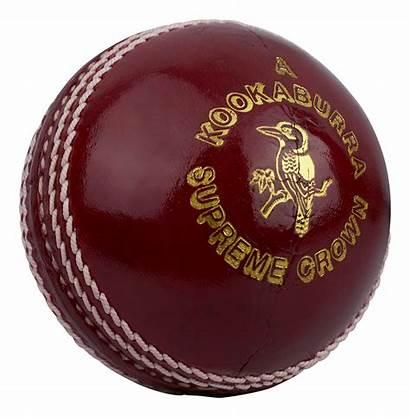 Cricket Ball Kookaburra Supreme Crown Balls