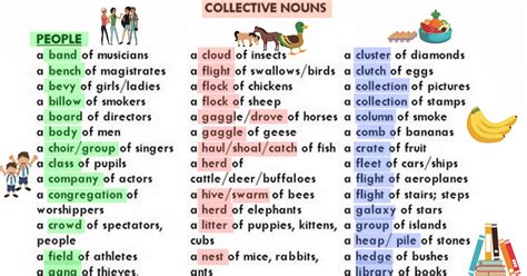 Group Words For People, Animals And