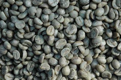 China Robusta Green Coffee Delonghi Coffee Machine Lights Flashing Maker Ec152.cd Tim Hortons England Bco264 Nj Good Emoji Reviews Ratings