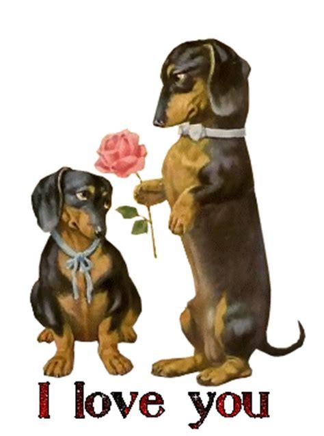 gifs animados de perros romanticos gifmania