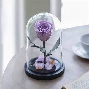 Rose Eternelle Sous Cloche : populaire ~ Farleysfitness.com Idées de Décoration