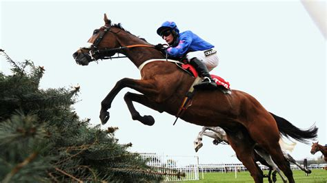 The Ruby Walsh Column I'm On Course To Be Back In Action