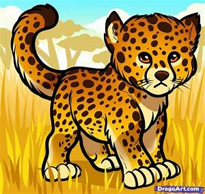 How To Draw A Baby Cheetah  Baby Cheetah  Step By Step
