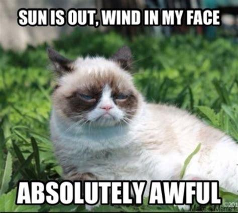 Grumpy Meme Face - grumpy cat no meme facebook image memes at relatably com