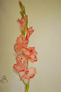 Gladiolus is one of the most prettiest flowers according ...